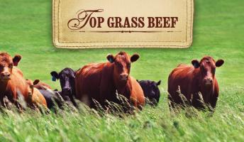 Top Grass Beef