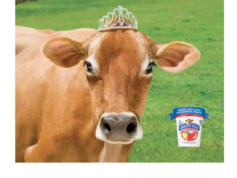 Brown Cow Farm About Spud Com