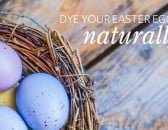 BLOG_FEATURE_natural_easter_egg_dyes_1000x600