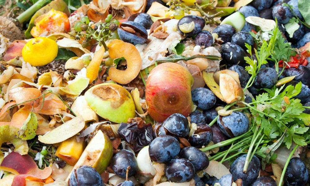 Usa Facts Foodwaste