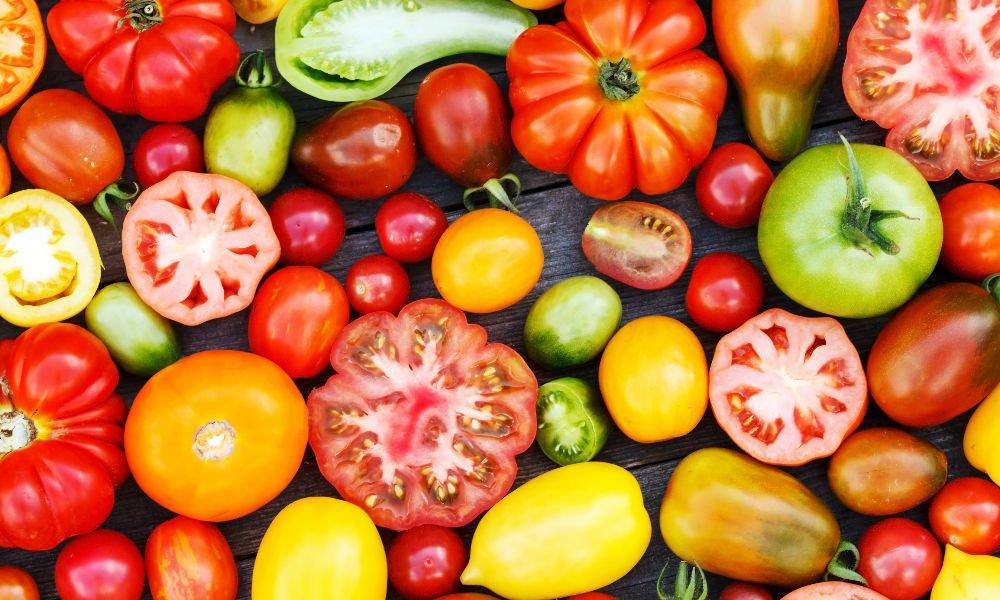 Blog Yellow Tomatoes 1000x600