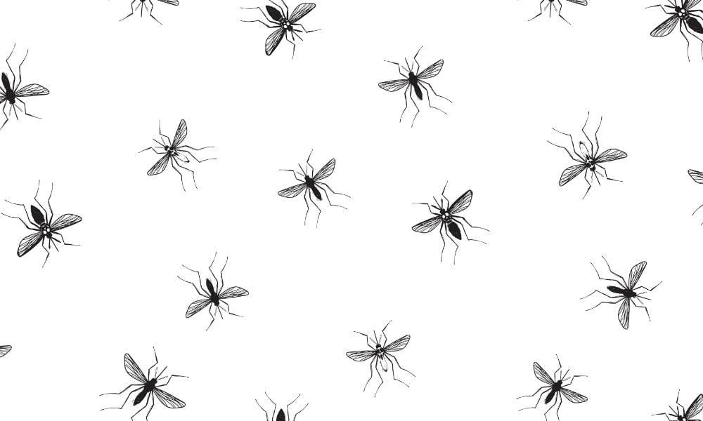THE DEETS: DIY APPLE CIDER VINEGAR MOSQUITO REPELLENT