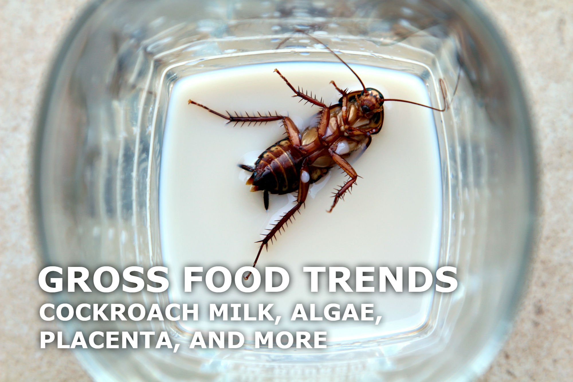 5 GROSS FOOD TRENDS: COCKROACH MILK, ALGAE, INSECT COCKTAILS, AND MORE
