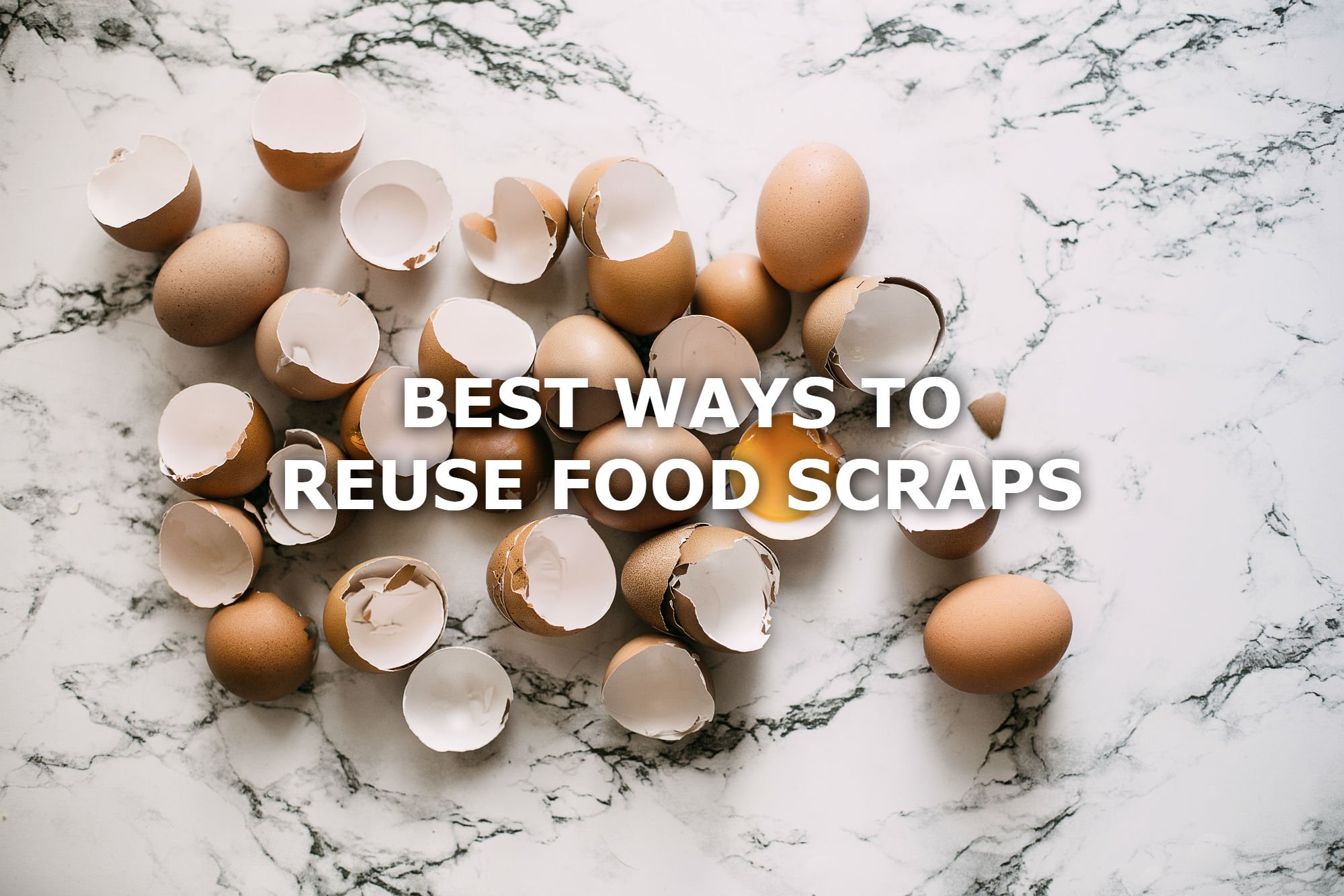 Ways To Reuse Food Scraps You Ll Like 5 Of These Spud Ca