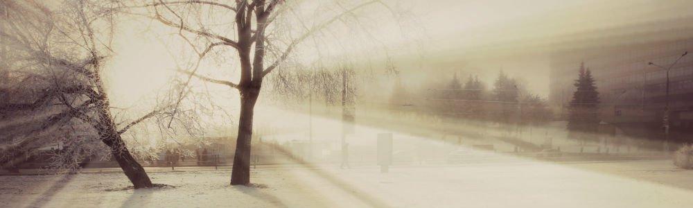 BLOG Snowy 1000x300