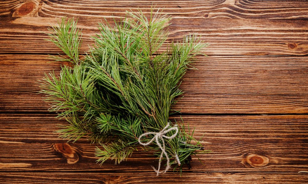 INFUSE HOLIDAY SPIRIT WITH THE BALSAM FIR SIMPLE SYRUP