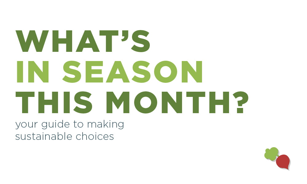 WE'VE GOT YOUR WHAT'S IN-SEASON GUIDE FOR FEBRUARY