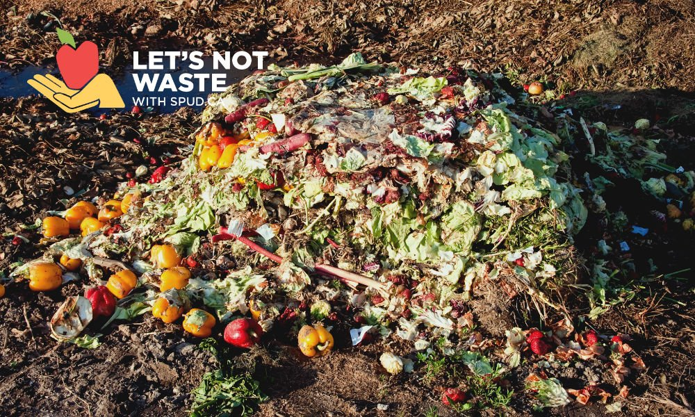 Can You Compost Food And Dog Waste