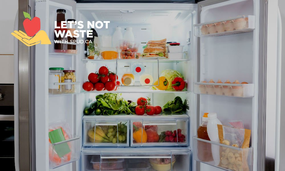 HOW TO EMPTY YOUR FRIDGE BEFORE A TRIP WITHOUT WASTING ANY FOOD