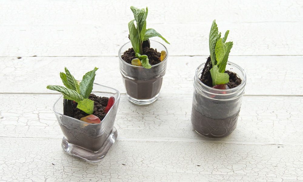 LOOKING FOR AN EDIBLE EARTH DAY CRAFT? MAKE THESE DIRT 'N WORMS POTS