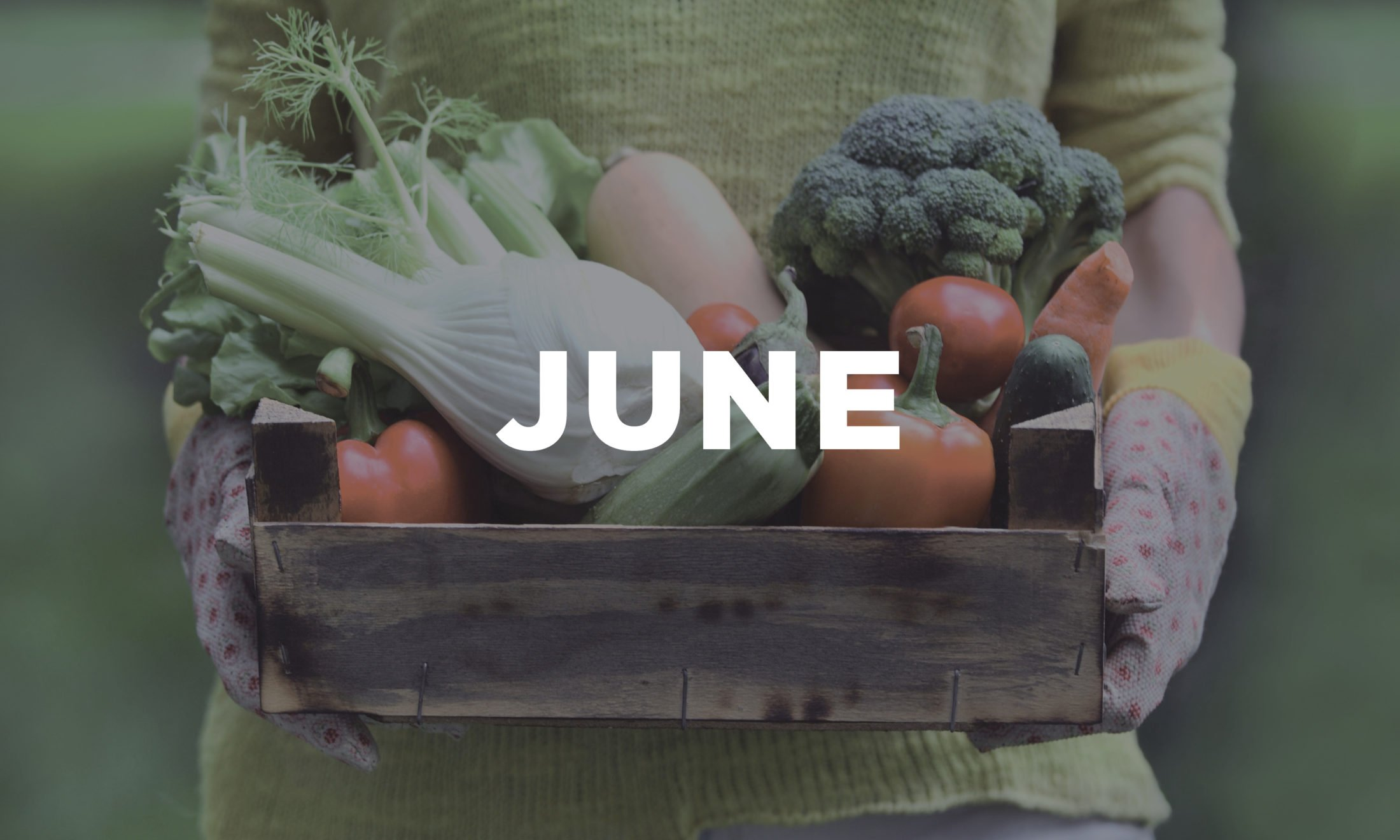 HERE'S YOUR GUIDE TO LOCAL PRODUCE FOR JUNE!