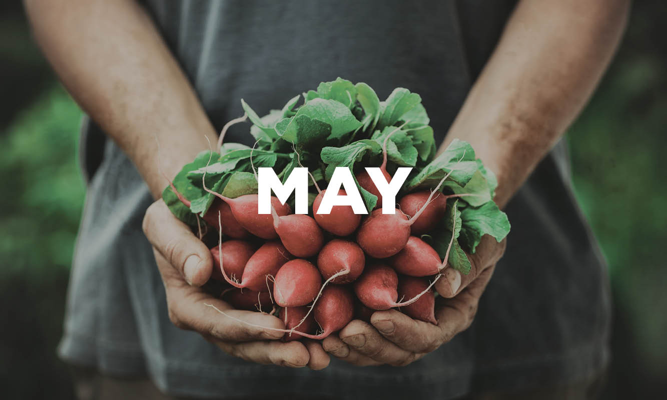 WE'VE GOT YOUR WHAT'S IN-SEASON GUIDE FOR MAY