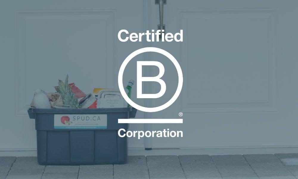 B Corp Blog