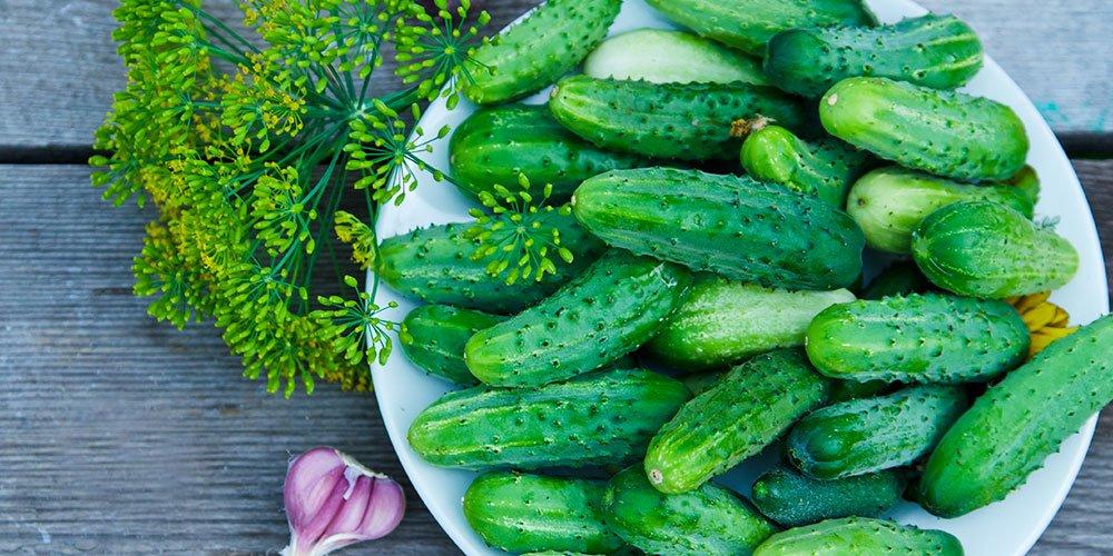 Tips For Pickling