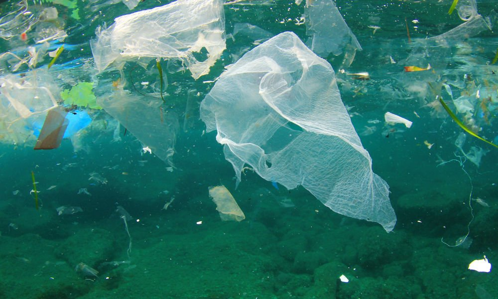 Canadians Waste Enough Plastic Bags To Circle The Earth 55 Times. Annually!