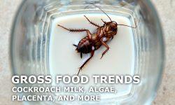 Gross Food Trends Cockroach Milk
