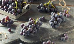 Coronation Grape Tart Recipe