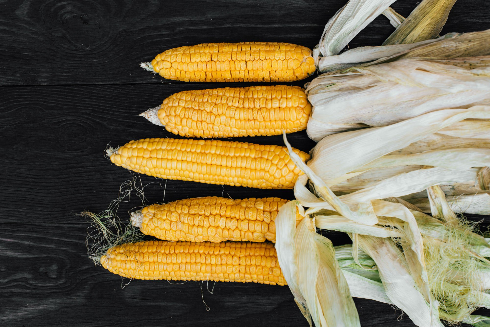THE BEST WAY TO COOK CORN: BEER-BATTERED CORN-ON-THE-COB