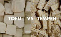 TOFU VS. TEMPEH