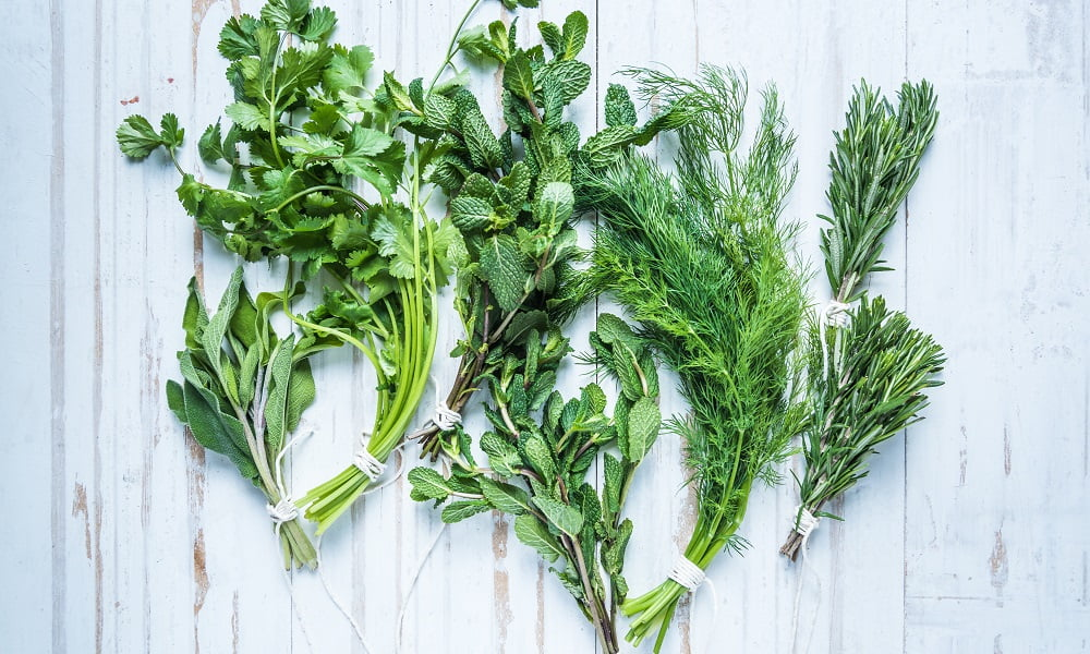 5 DELICIOUS WAYS TO USE UP YOUR LEFTOVER HERBS