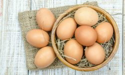 Organic Eggs Certifications