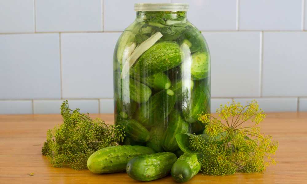Homemade Dill Pickle