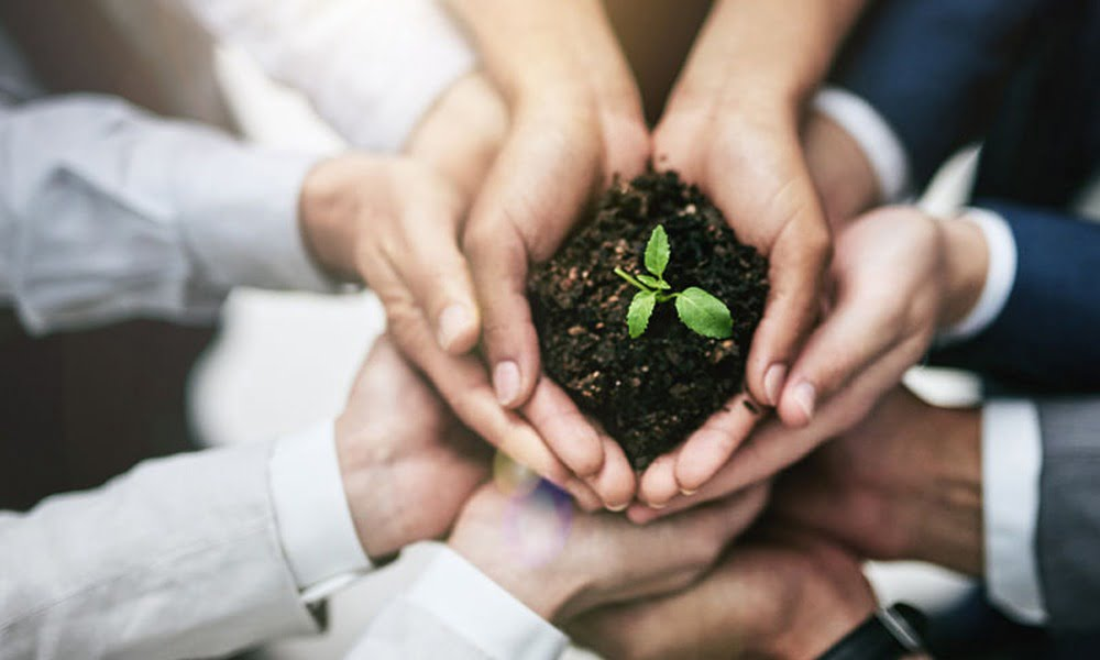 A Startup's Triple Bottom Line To Social Responsibility