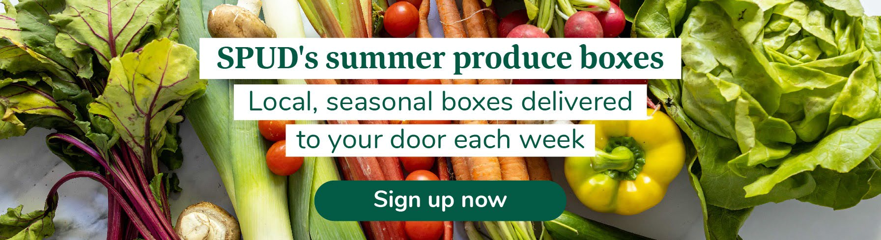 Summer Produce Boxes