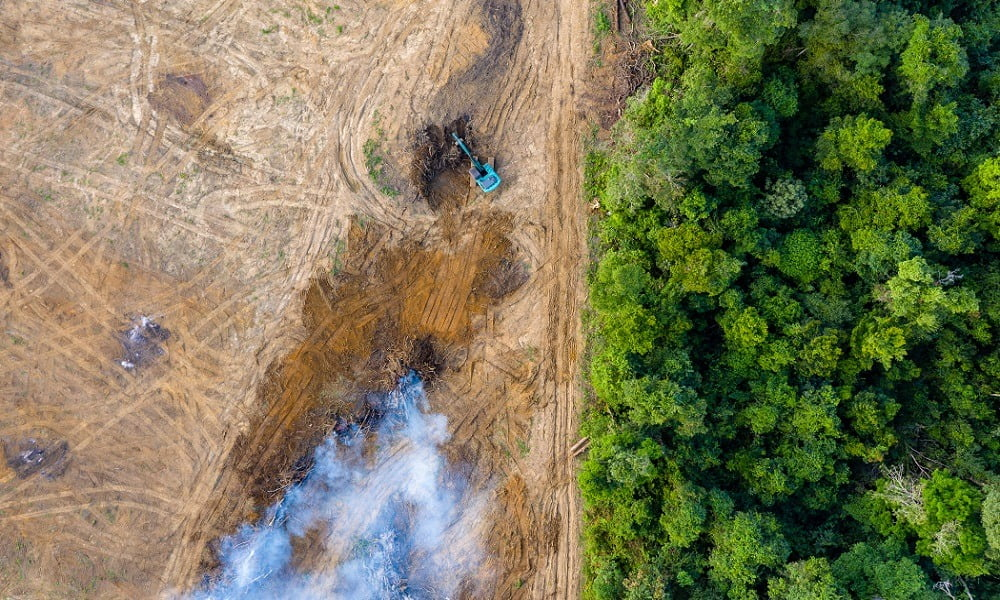 THE AMAZON RAINFOREST FIRES IS NOT A NATURAL DISASTER