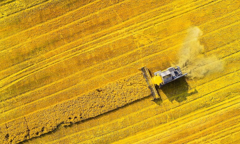 ABOUT HALF OF AGRICULTURE WORLDWIDE IS NOT PRODUCING FOOD