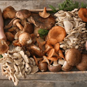 Different Ways To Cook Mushrooms
