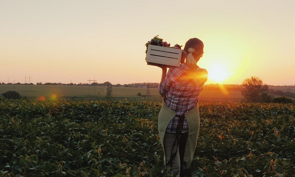 THIS MONTH, SPUD.CA IS TEAMING UP WITH YOUNG AGRARIANS TO SUPPORT WOMEN IN OUR FOOD SYSTEM