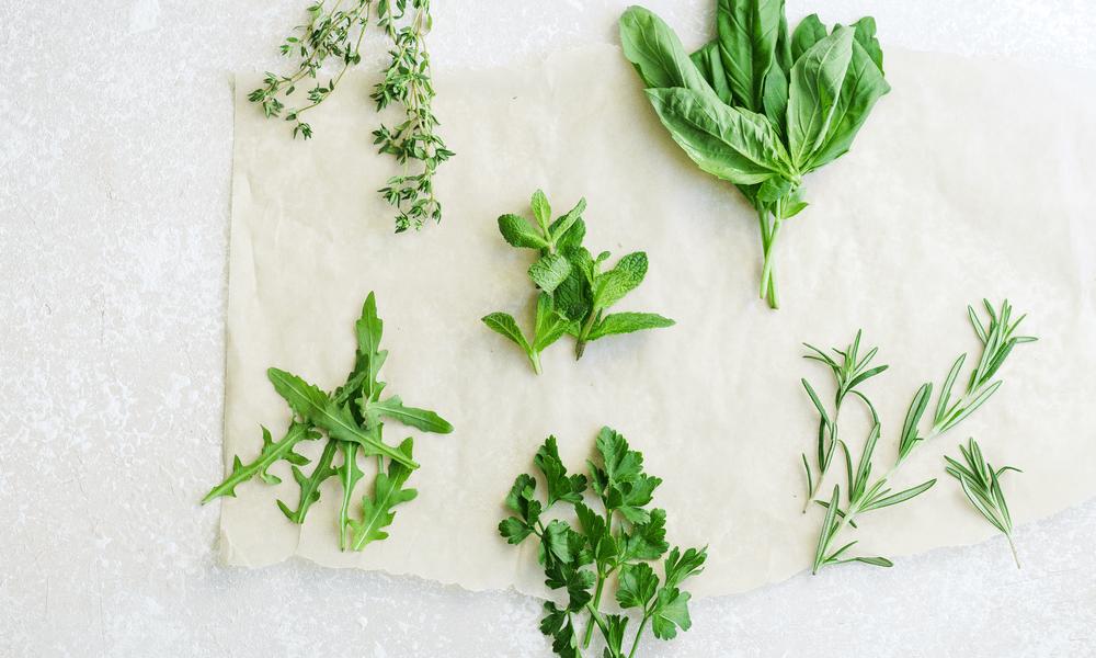 herb food storage
