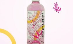Confluence Pink Gin